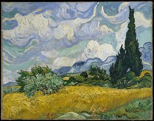 wheat fields with cypress